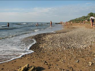Песок и ракушки