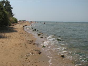 Вдоль пляжа